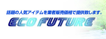 eco future